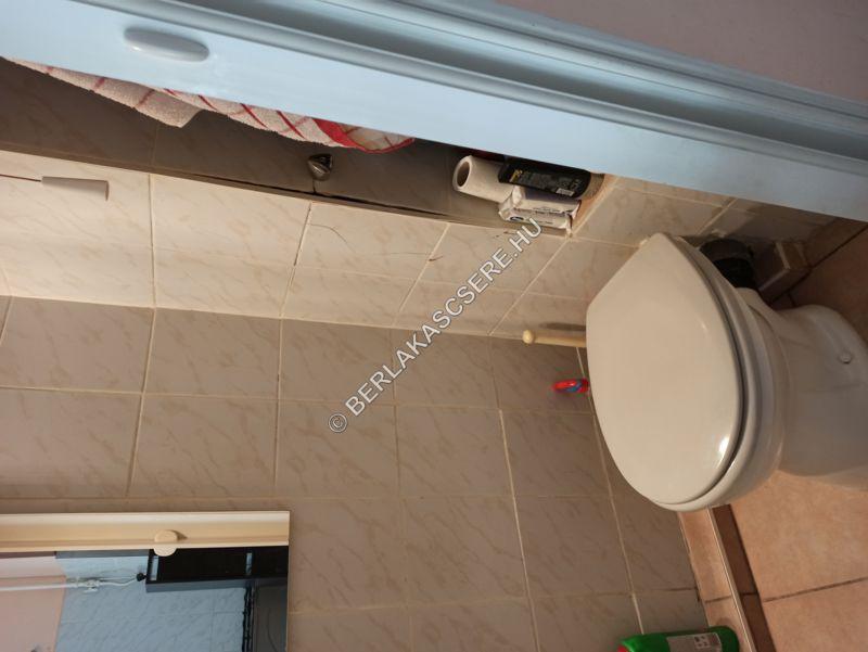 Zuhanyzó + WC